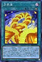遊戯王カード 方界業(スーパーパラレルレア) 20th ANNIVERSARY LEGEND COLLECTION(20TH) | カルマ 永続魔法 スーパーパラレル レア