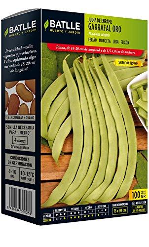 Crema De Verduras Judias Verdes