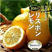 リスボンレモン 10kg