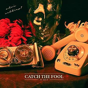 Catch the Fool