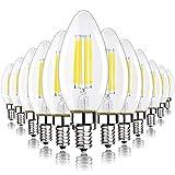 Daylight 5000K, Dimmable E12 LED Candelabra Bulb, 60 Watt Equivalent B11 LED Chandelier Light Bulbs, 550 Lumens, Candle Base Bulb for Ceiling Fan, UL Listed, 12 Pack
