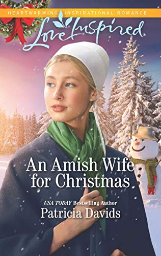 An Amish Wife for Christmas: A Fresh-Start Family Romance (North Country Amish Book 1)