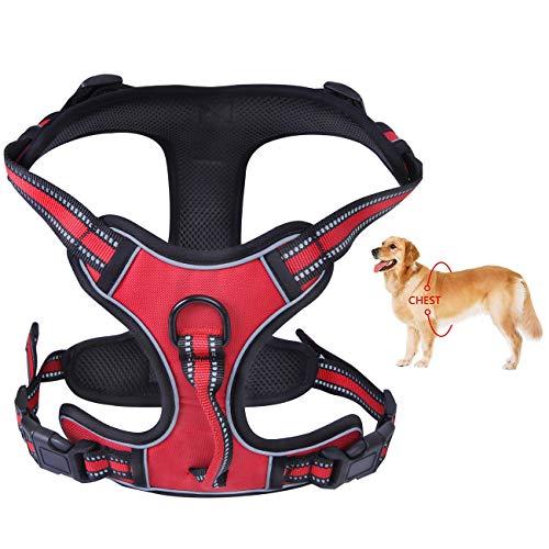 PETGDS Arnés del Perro Antitirones Básicos Adjustable de Nylon, 3M Reflectante para Las Actividades al Aire Libre, Perros Coche Adiesreamiento Bicicleda Correr Chaleco Acolchado Ajustable - Rojo(L)