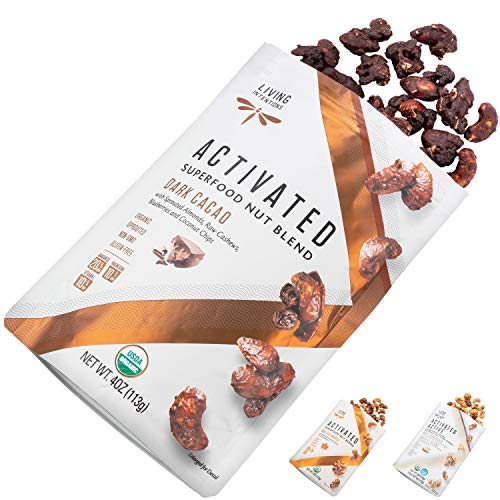 Living Intentions Gekeimte Bio Superfood Nussmischung Dark Cacao, 113 g