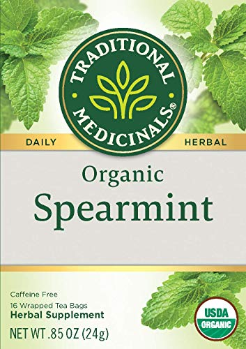 TRADITIONAL MEDICINALS TEA Bags, OG2, Spearmint, 16 Count