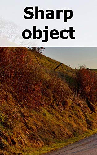 Sharp object (Afrikaans Edition)