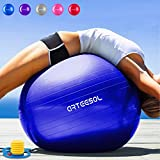 Arteesol Balle Fitness 65 cm/75 cm Anti-éclatement Anti-dérapant Yoga Swiss...