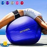 Arteesol Palla Fitness 45cm 55cm 65cm 75cm Palla da...