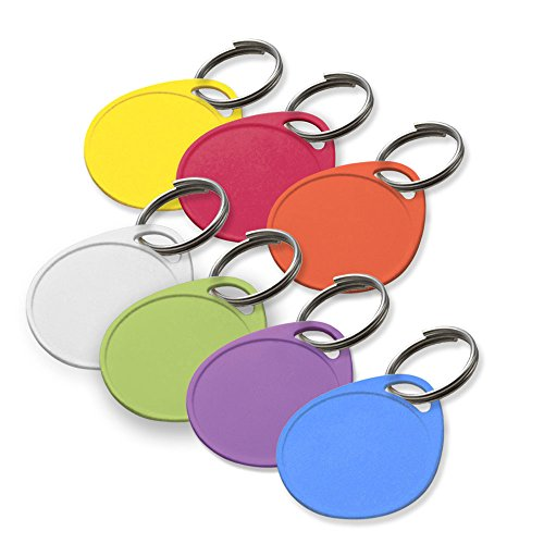 """Lucky Line 1-1/4"""" Label It Plastic Tag, 100 Pack, Assorted Colors (25075)"""