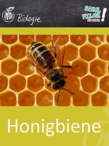 Honigbiene - Schulfilm Biologie