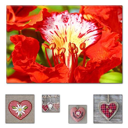 Eco Light Wall Art Bundle sur Toile Belle Paon Fleur 60 x 90 cm pour décoration intérieure et Adorable Hearts Collage Lot de 4 encadrée des Illustrations pour décoration intérieure