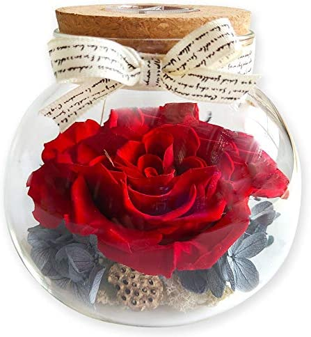 Handmade Preserved Eternal Rose Forever Enchanted Flowers Gift in Glass Dome Desktop Home Decor product image