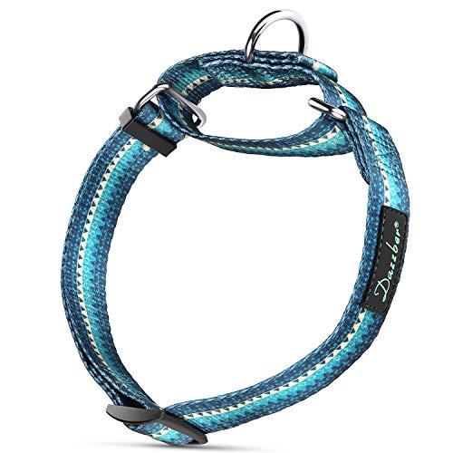 Dazzber Martingal Halsbänder für Hunde, Einstellbar-Heavy Duty- Weiche-Glatte-Leichtes Gehen Sie den Hund für Große/Klein Hunde (Groß, Türkis Grün)