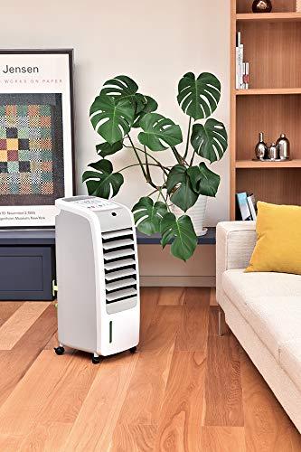 ホット&クールモイストアピックスAHC-880R冷風扇涼風扇扇風機冷風機クーラー正規品