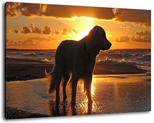 In de kleur zonsondergang op canvas, enorme afbeeldingen? XXL compleet ingelijst, kant-en-klaar ingelijst, kunstdruk, wandafbeelding