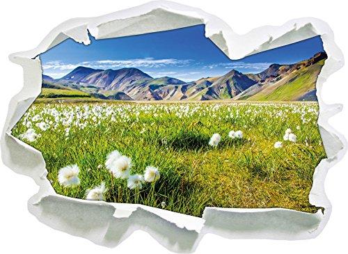 Alpenwiese, Papier 3D-Wandsticker Format: 92x67 cm Wanddekoration 3D-Wandaufkleber Wandtattoo
