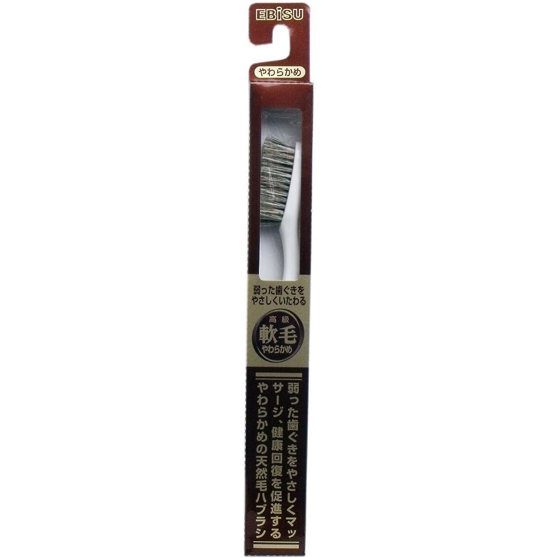 レンジ入るチャーム【エビス】天然毛軟毛歯ブラシ 500 やわらかめ 1本 ×3個セット