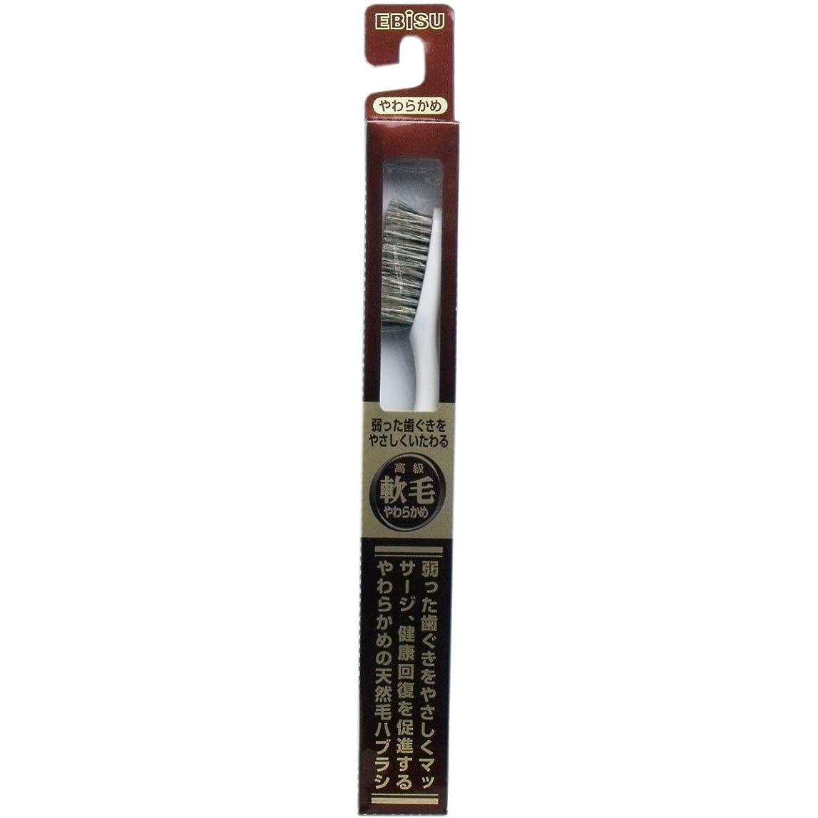 スキーことわざ実際の【エビス】天然毛軟毛歯ブラシ 500 やわらかめ 1本 ×10個セット