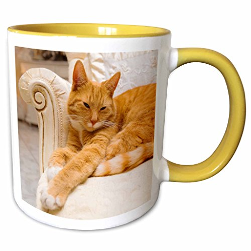 3dRose mug_236171_8 Happy orange tabby cat relaxing on fancy armchair, Yellow Becher, gelb