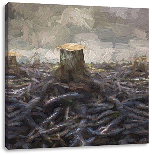 van ontruimde bosCanvas Foto Plein | Maat: 70x70 cm | Wanddecoraties | Kunstdruk | Volledig gemonteerd