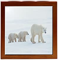 Rikki Knight 5-Inch Polar Bears Together Design Wooden Tile Pen Holder (RK-PH1611) [並行輸入品]