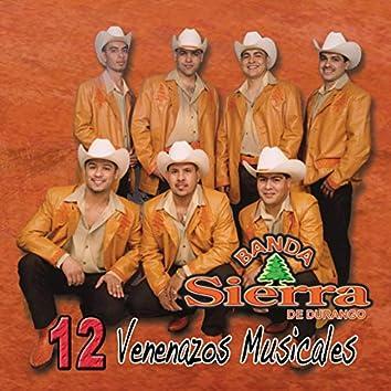12 Venenazos Musicales