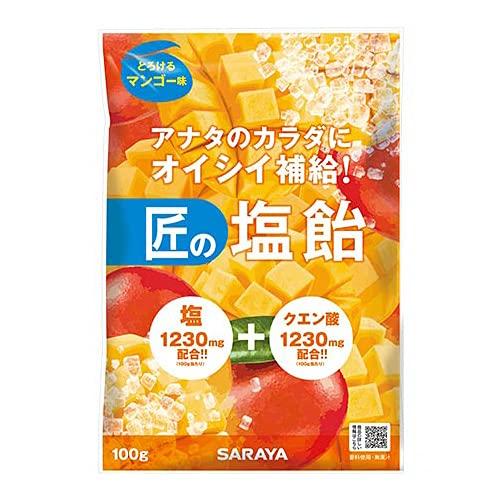 サラヤ 匠の塩飴 マンゴー味 100g×20本入×(2ケース)