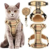 Best cat harness - KOOLTAIL Cat Harness Escape Proof and Leash Set Review