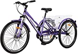 Best Adult Tricycles - Barbella Adult Mountain Bike, 7 Speed Three Wheel Review