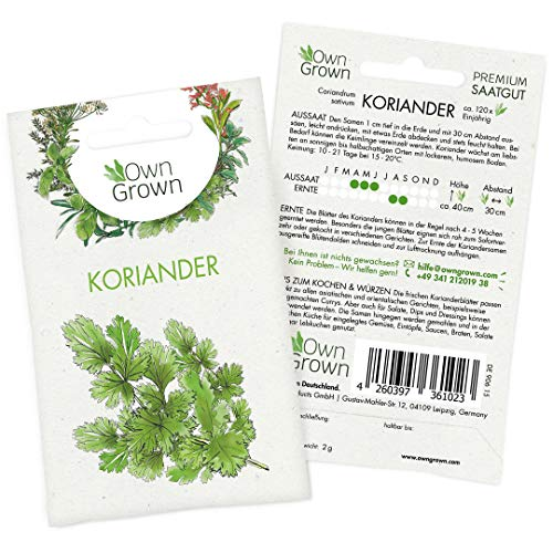 OwnGrown Premium Koriander Samen (Coriandrum sativum), Koriandersamen einjährig zum Pflanzen, Saatgut für rund 100 Koriander Pflanzen