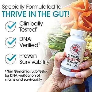 Silver Fern Ultimate Probiotic Supplement Vegicaps - Daily Metabolic Restoration, 100% Survivability, DNA Verified Multi-Strain Bacillus Probiotic Capsules (1 Bottle - 60 Capsules)