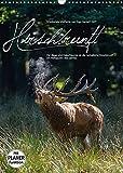 Emotionale Momente: Hirschbrunft (Wandkalender 2022 DIN A3 hoch): Der König der Wälder in dramatisch...