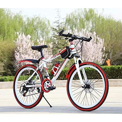 Mountain Bike per mountain bike, mountain bike, da uomo, da 26 pollici, telaio in acciaio al carbonio, doppio freno a disco, 21/24 velocità, mountain bike per donne e uomini adulti