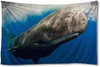 Best sperm whale wall art Reviews