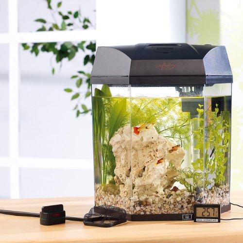 "infactory Beleuchtetes Panorama-Aquarium ""Hexagon"", Komplett-Set, 19 l - 7"