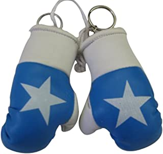 Flag Mini Small Boxing Gloves to Hang Over Car Automobile Mirror – Asia & Africa