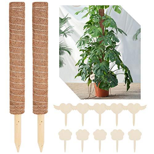 57cm 2 Stück Moosstab Monstera Rankhilfe mit 10 Holzetiketten für Pflanzenname Pflanzzeit Kokosstab Moosstab für Zimmerpflanzen aus Kokosfaser Pflanzenstab zur Dekoration Verlängerbar 100CM