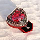 Gifts for Women-Heart-Shaped Forever Rose Box,Romantic Rose Flower Gift,4 in 1 Gift Pack Preserved Flowers with 100 Language I Love You Necklace,Valentines Day/Anniversary/Birthday for Her(Red Roses)