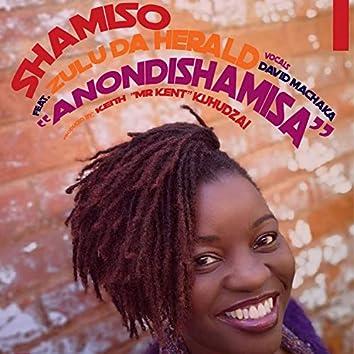Anondishamisa (feat. Zulu Da Herald)