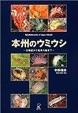 本州のウミウシ―北海道から奄美大島まで