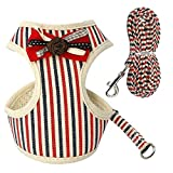 Soft Mesh Pet Puppy Dog Cat Arnés Leash Set con Bell Lace Chaleco for Mascotas for Perros pequeños y medianos S M L XL Travel (Color : Red, Size : S)