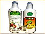 Argan Italia Olio di Neem SOLUBILE per Piante 1 lt + Sapone Molle di potassio corroborante 1 kg con dosatore +Sapone COSMETICO al NEEM