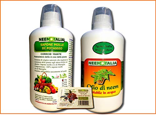 Argan Italia Olio di Neem SOLUBILE per Piante 1 lt...