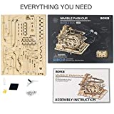 ROKR 3D Wooden Puzzle for Adults Model Kit Marble Run Craft Set Educational Toy Building Engineering Set Christmas/Birthday/Thanksgiving Day Gift for Boys Girl Kids Age 14+(LG501-Waterwheel Coaster)