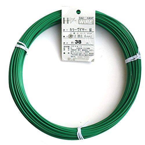 ダイドーハント (DAIDOHANT) 針金 [ビニール被覆] カラーワイヤー グリーン ( 緑 ) [太さ] #12 (2.6 mm x [長さ] 36m 54013