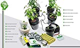 DWC Deep Water Culture Hydroponic System! Ten Green Fingers Easy to use Complete