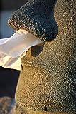 Rotary Hero – Moai Taschentuchbox / Taschentuchspender / Kosmetiktücherbox - 9
