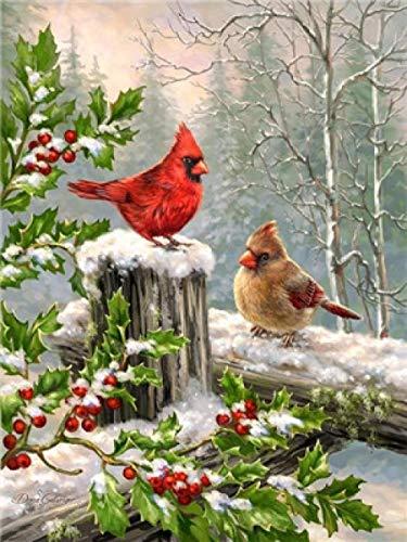 Schilderen op nummers, olieverfschilderij, knutselen, voor kinderen, volwassenen, geschenken, decoratie, huis, kantoor, ambachten voor vogels in de sneeuw, zonder lijst, 40 x 50 cm