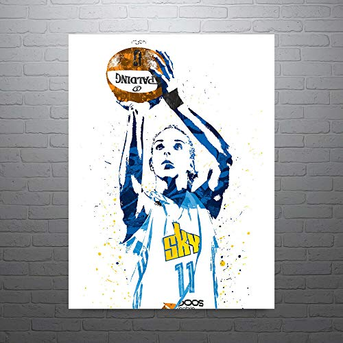 Diuangfoong Elena Delle Donne Chicago Sky Basketball Poster FREE US SHIPPING