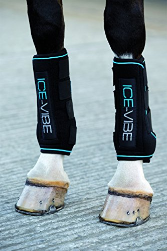 Horseware Ice Vibe Boot Full Black/Aqua